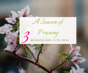 A season of pruning